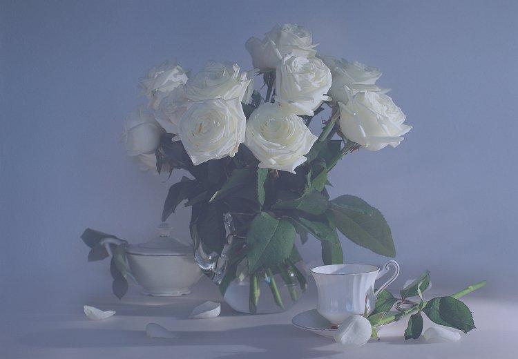 белые, розы, фото, натюрморт, Ольга Горелова