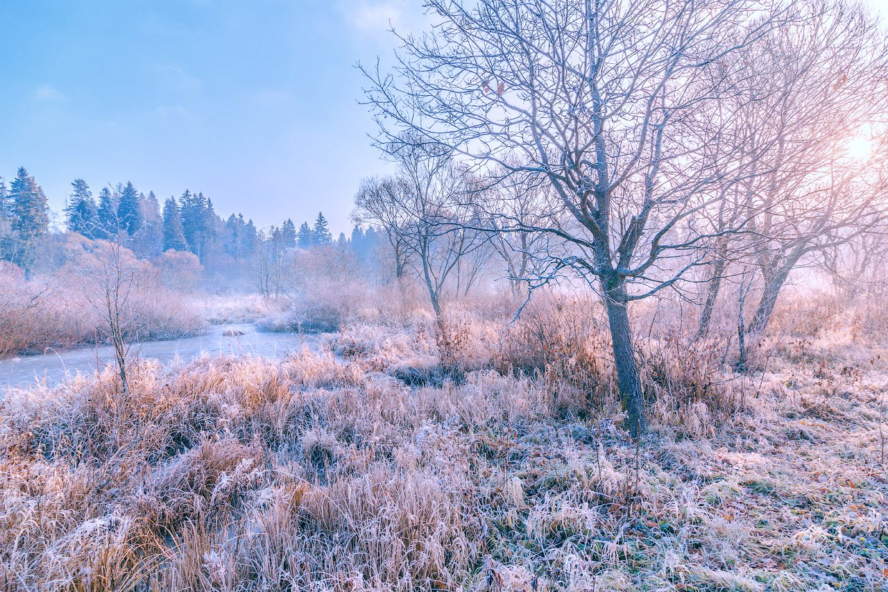 утро, мороз, иней, солнце, рассвет, река, природа, Виктор Климкин