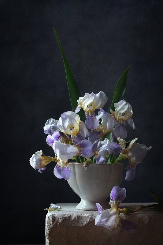 натюрморт, цветы, ирисы, бабочка, Курочкина Диана