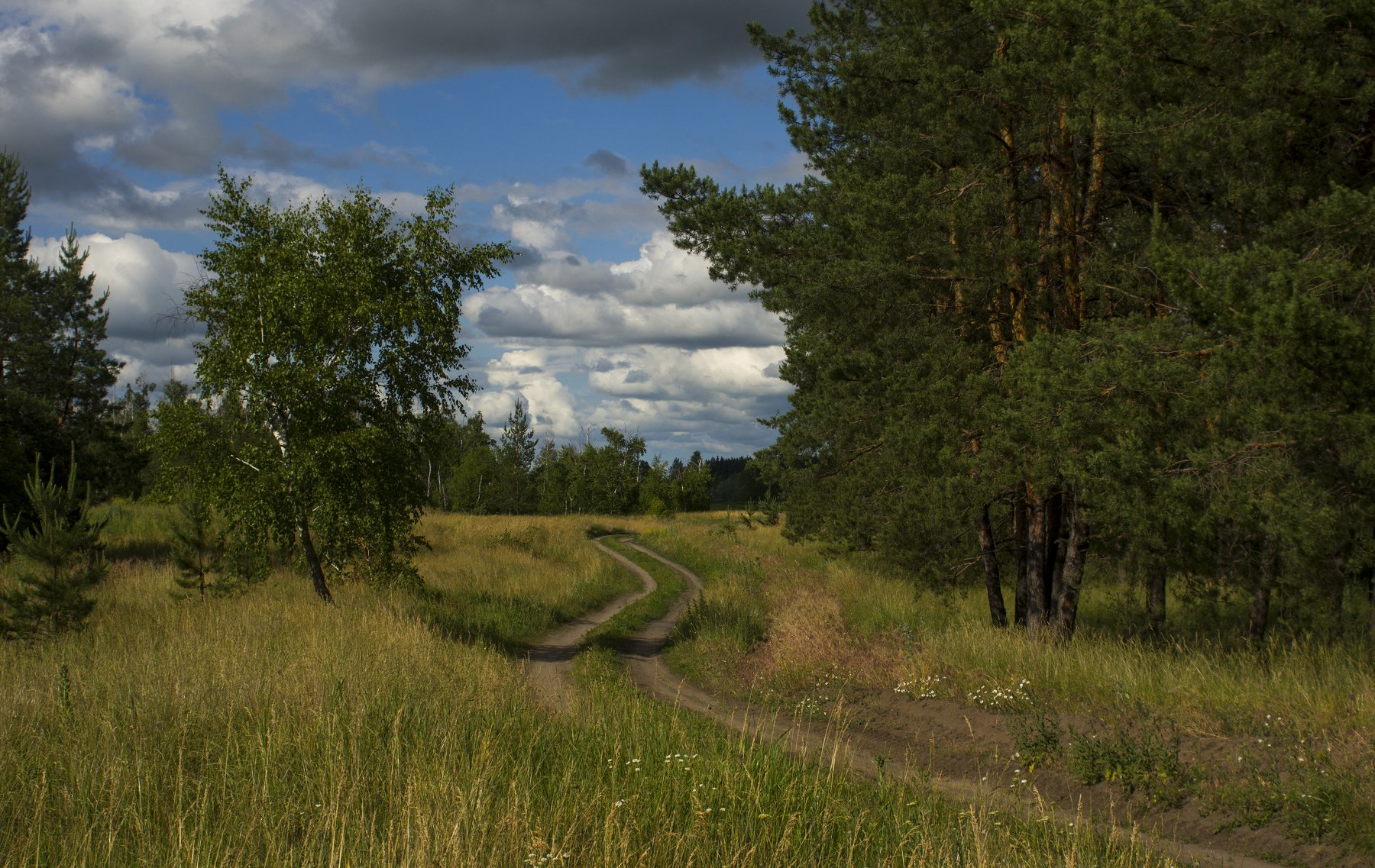 природа, Валерий Черняк