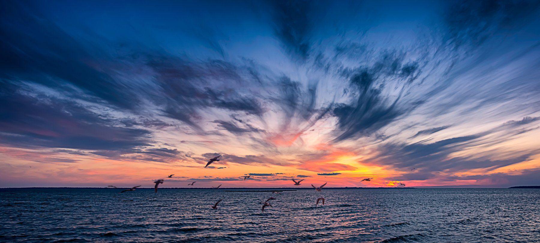чайки, закат. днестровский лиман, seagulls, sunset, dniester estuary, sky, landscape, sunset, water, cloud, panoramic, Виктор