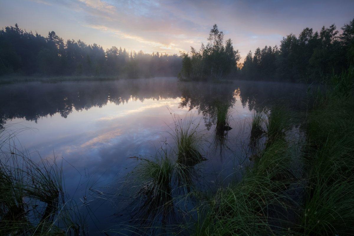 утро, лето, озеро, тишина, природа, благодать, Копычко Михаил
