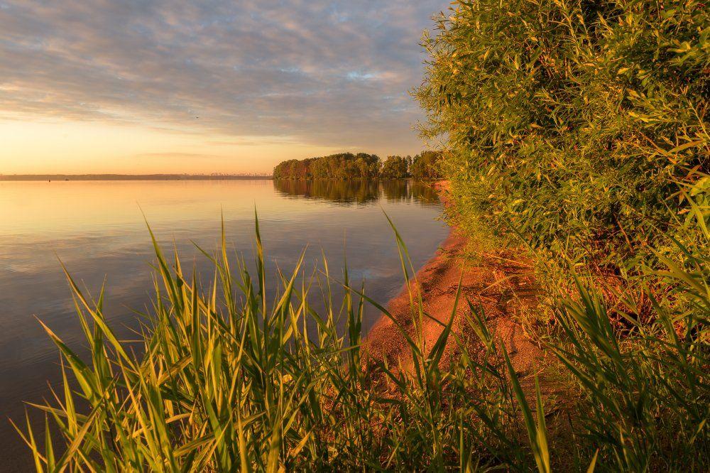 пейзаж,природа,утро,рассвет,небо,песок,беларусь,лето, Юлия Лаптева