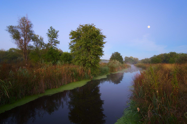 деревья, луна, осень, полнолуние, речка, туман, Утро, river, fog, morning, autumn, Moon, I'M