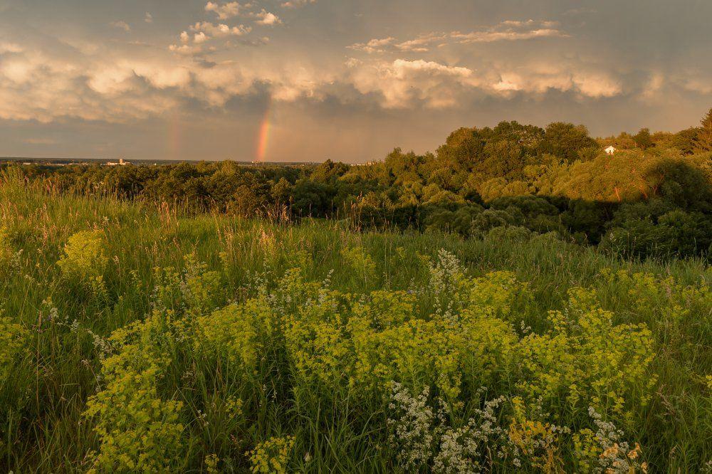 пейзаж,природа,буря,лето,вечер,закат,красота,радуга,трава,лето,тучи, Юлия Лаптева