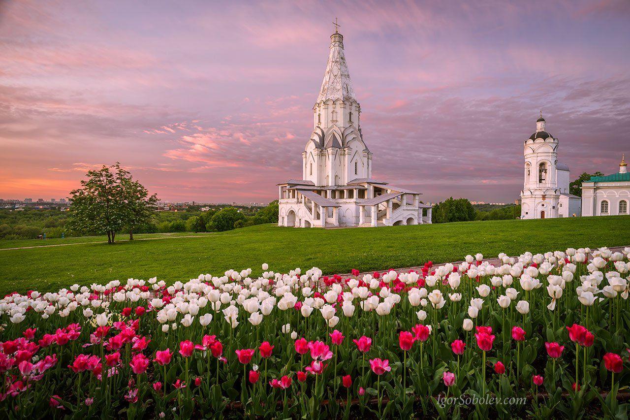 коломенское, церковь вознесения, парк, москва, утро, рассвет, Соболев Игорь