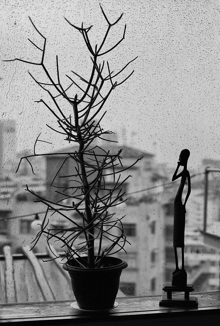 дождь, окно, стекло, капли, статуэтка, комнатное растение, Алла Соколова