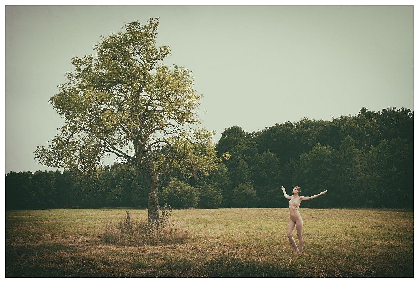 model, nude, naked, glamour, woman, female, colour, body, sexy, sensual, natural light, curves, portrait, erotica, fine art, nature, pose,, Lajos Csáki