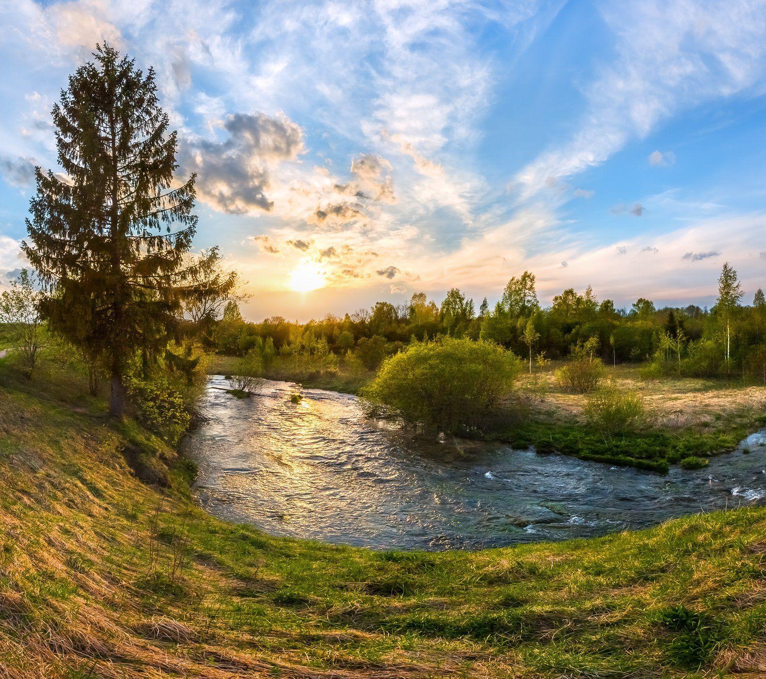 ленинградская область, река ижора, небо, облака, вода, лето, трава, закат, ель,, Лашков Фёдор