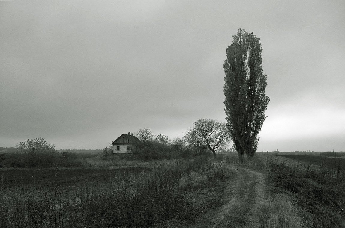 , Николай Шахманцир