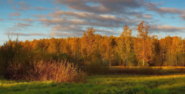 питер, осень, пушкин, царское, царское село, пейзаж, Таня She (Aiya)
