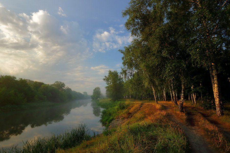 утро река изюм лето туман, Петриченко Валерий