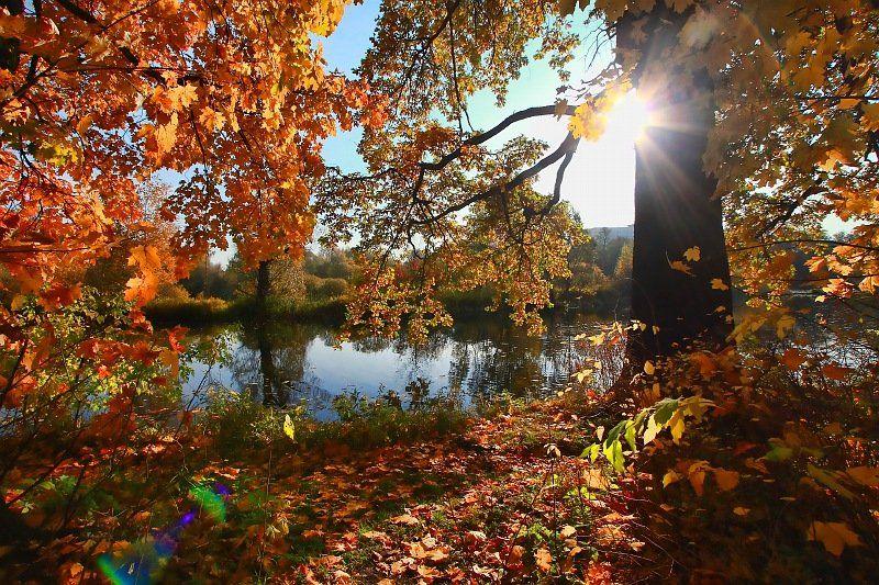 фото, пейзаж, краски, осень, октябрь, Ольга Горелова