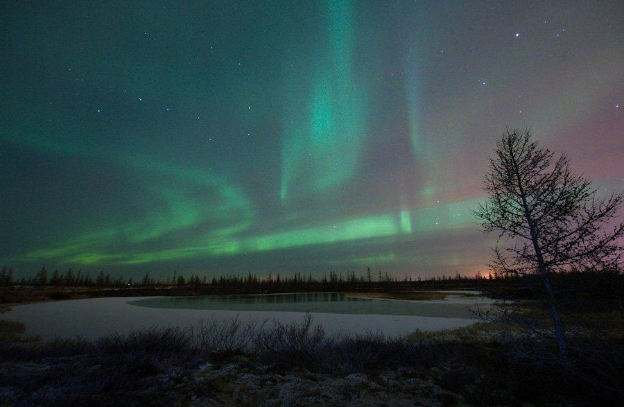 aurora borealis, северное сияние, природа, ночной пезаж, север, den-sau-pin