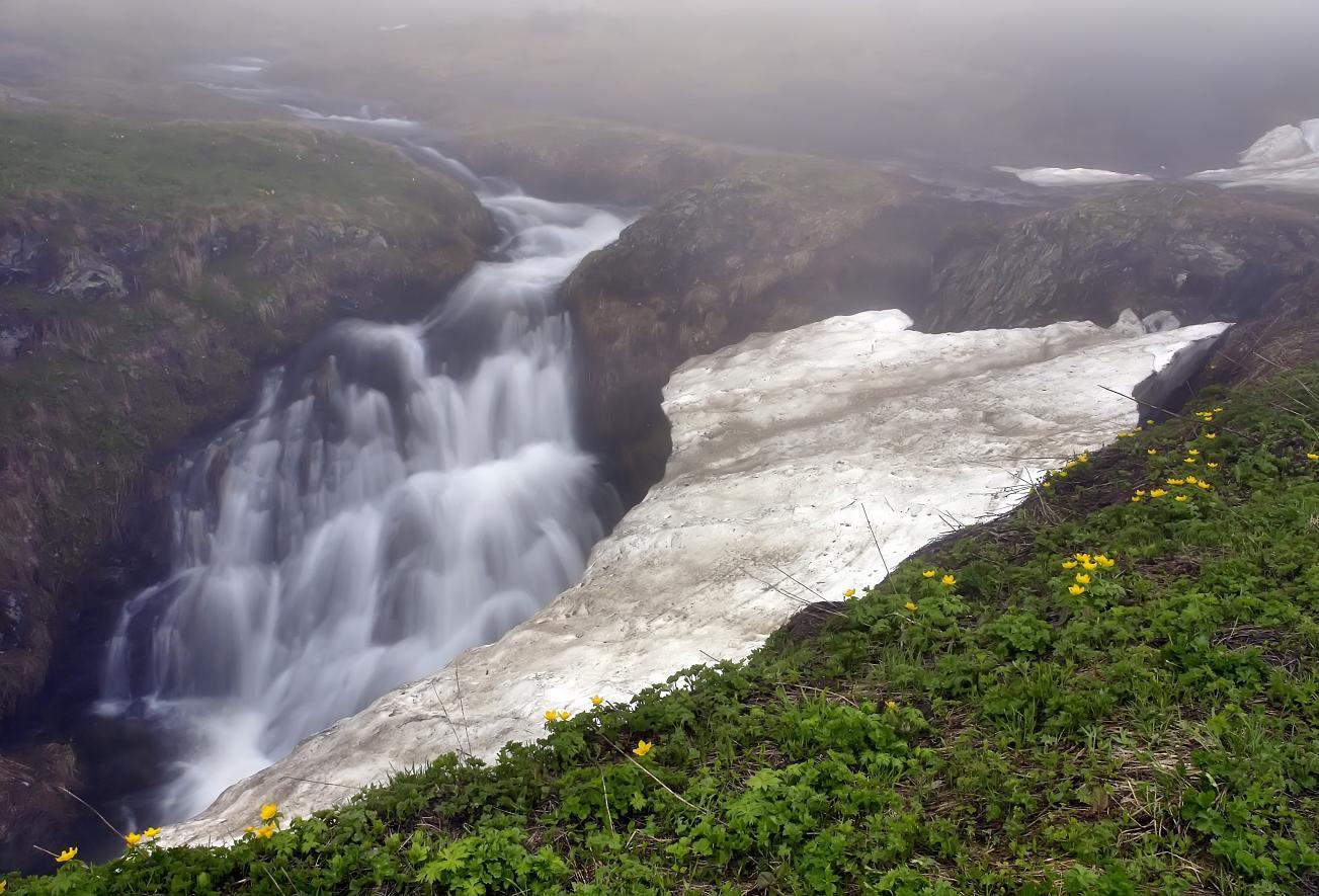 снег, вода, цветы, туман, Вадим