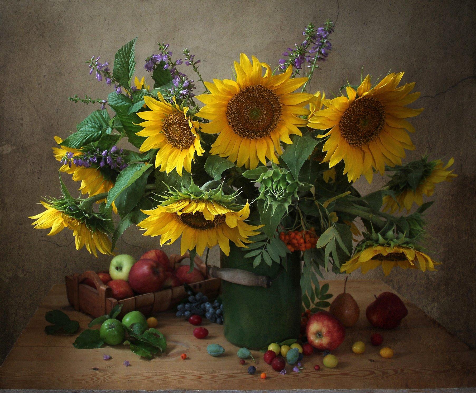 натюрморт, цветы, марина филатова, подсолнухи, яблоки, Марина Филатова