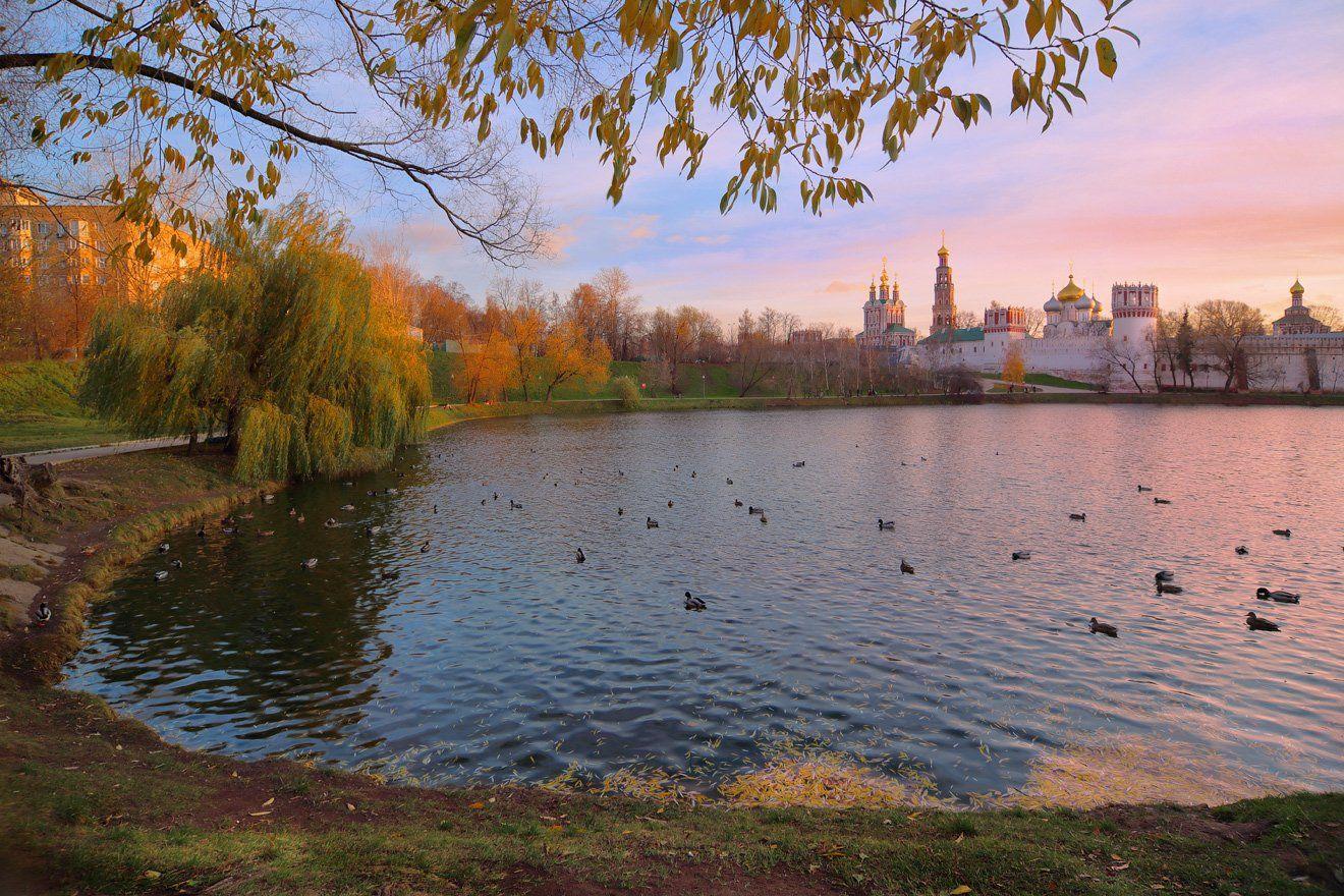 москва, вечер, пруд, монастырь, новодевичий монастырь, утки, Виктор Климкин