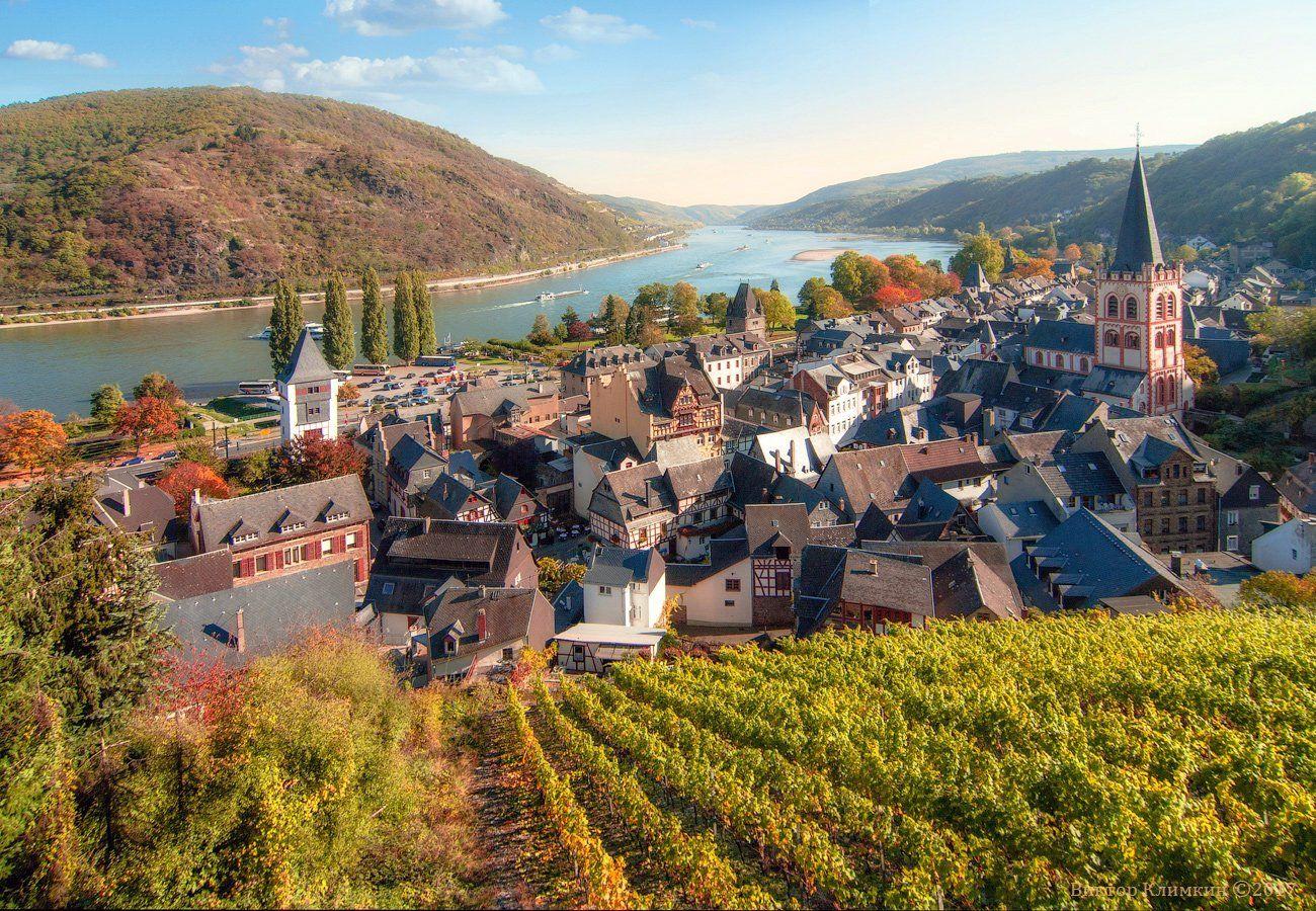 рейн, река, германия, виноградники, rhein, bacharach, deutschland, Виктор Климкин