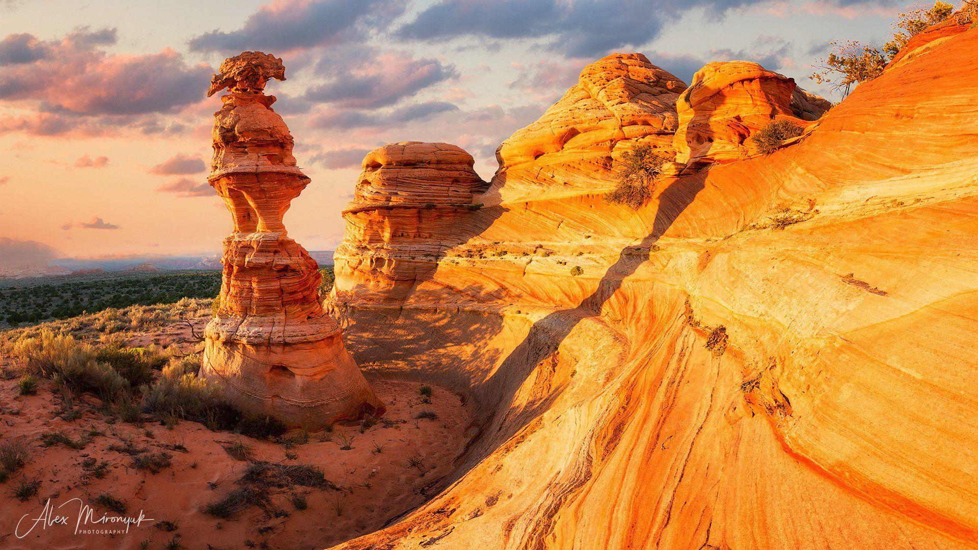 сша, каньон, аризона, юта, пустыня, абстракция,  свет,  индейцы, навахо, волна, закат, панорама, колонна, песчаник, скала, дюна,, Alex Mironyuk