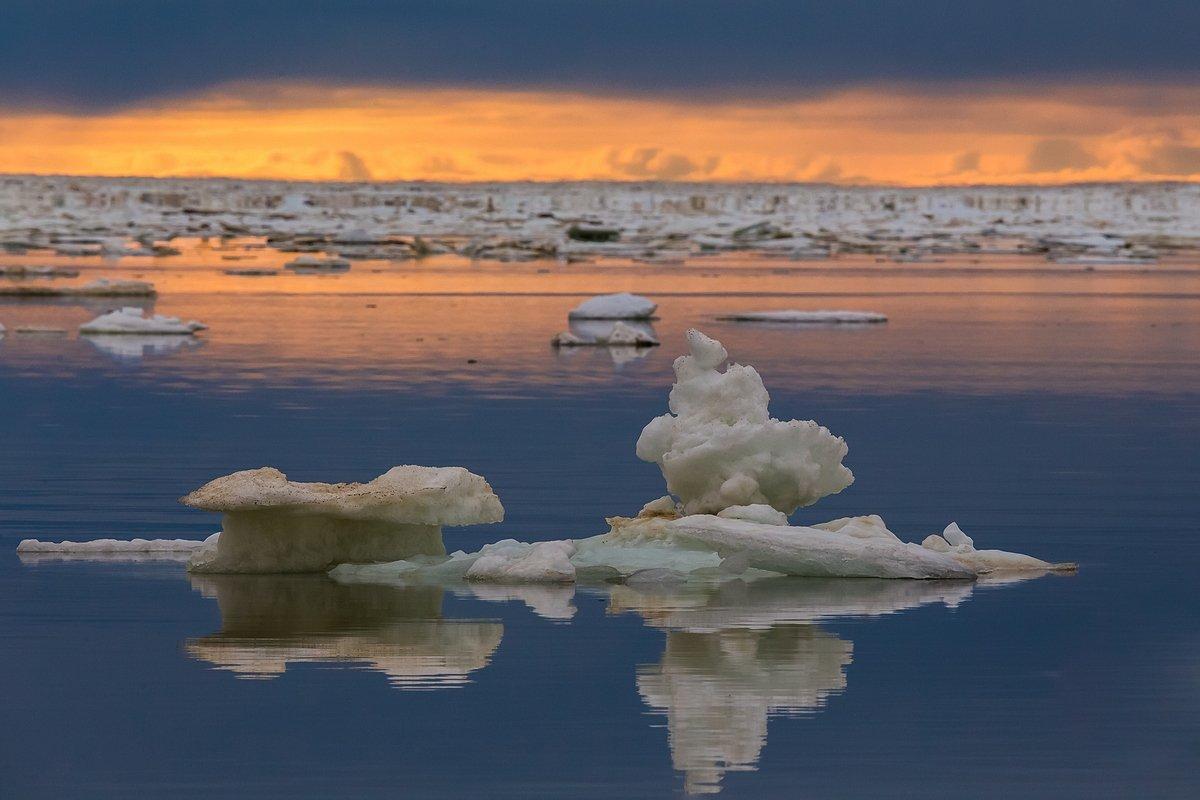 таймыр, море лаптевых, море, арктика, красноярский край, лед, льдины, Кирилл Уютнов