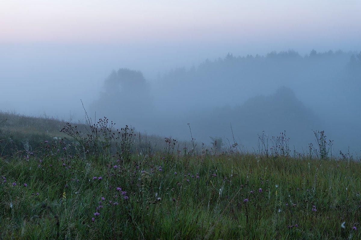 пейзаж.природа,утро,рассвет,туман.,лето, Юлия Лаптева
