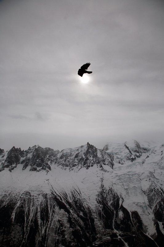 путешествие, горы, альпы, франция, шамони, птица, солнце, затмение, Y.S.