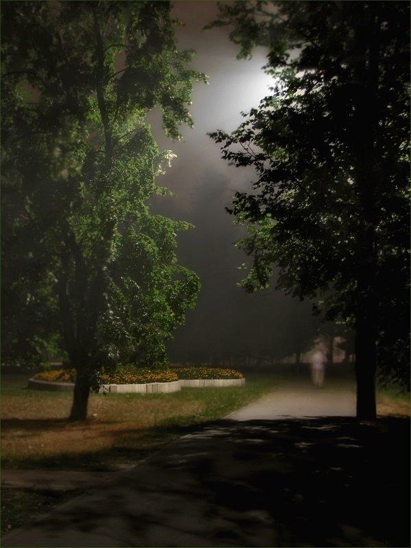 дым, ночь, парк, ЦокоТушка