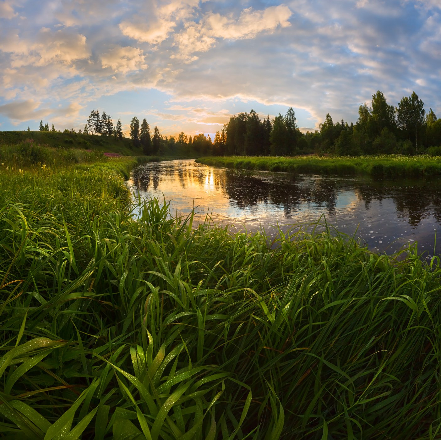 фототур, лето, ленинградская область, луг, трава, рассвет, река, облака, вода, отражение, роса,, Лашков Фёдор