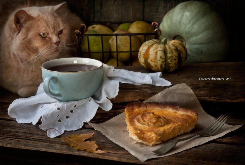 натюркотики, чай, осень, тыква, кот, животные, домашнее животное, пирог, яблоки, груши, Eleonora Grigorjeva