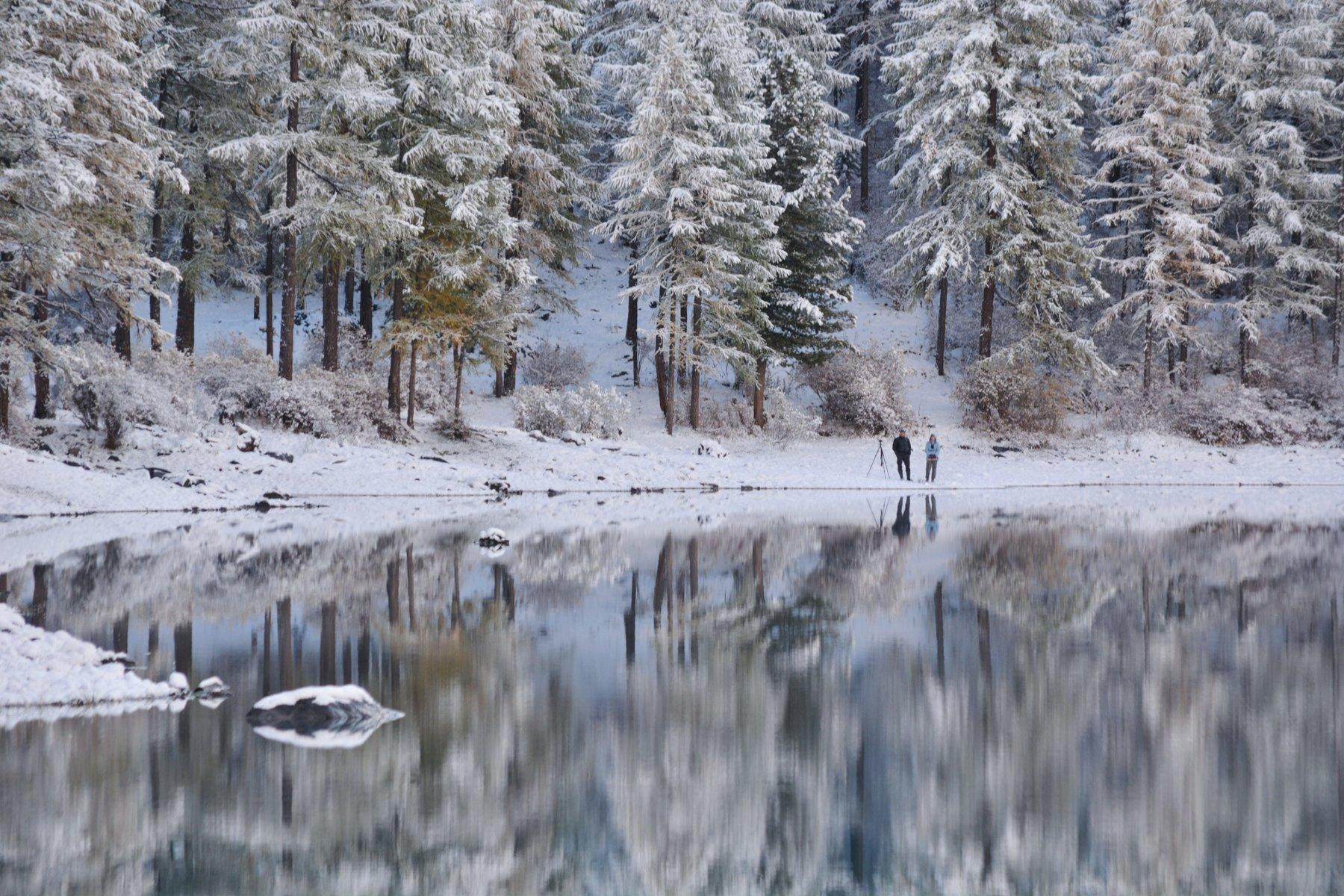 алтай,осень,первый снег, aleksei