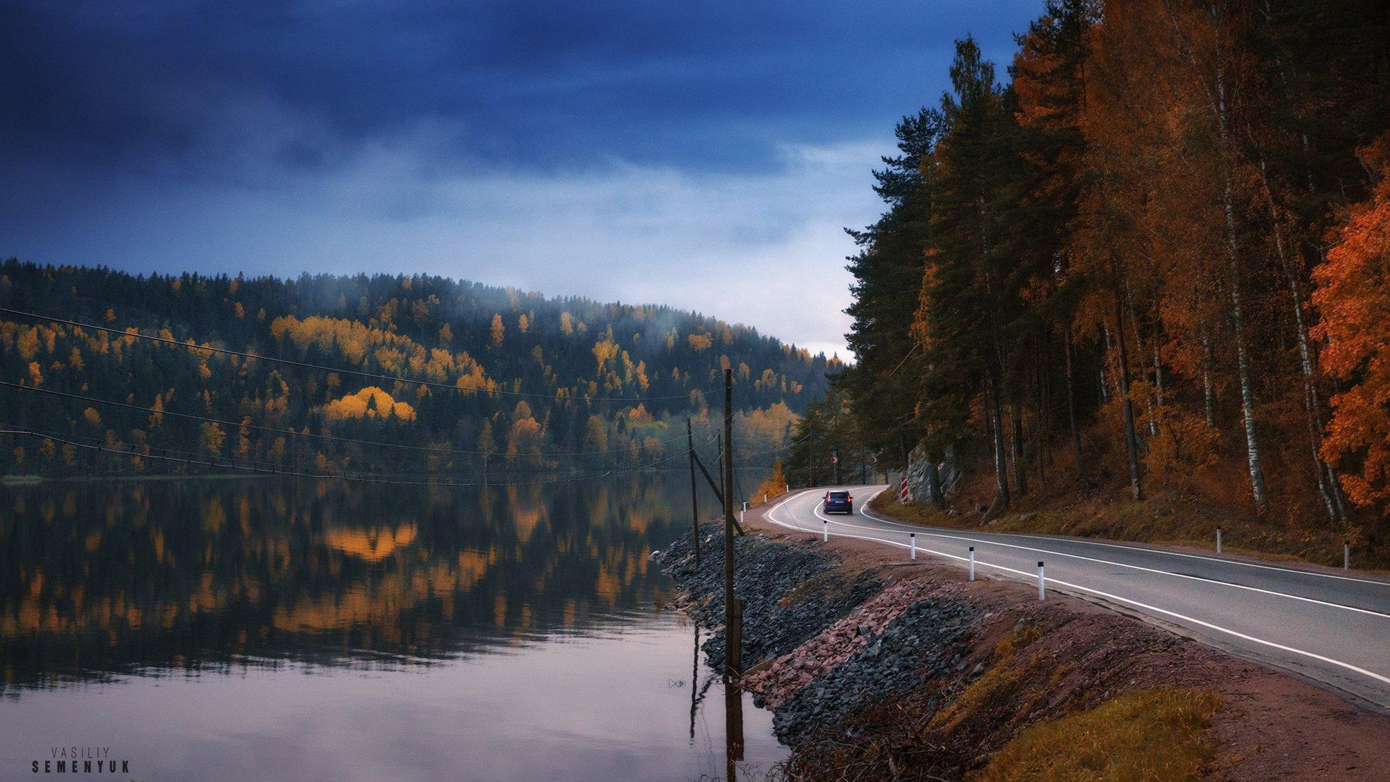 карелия, ладога, осень, деревья, золото, берег, лес, туман, дорога., Семенюк Василий