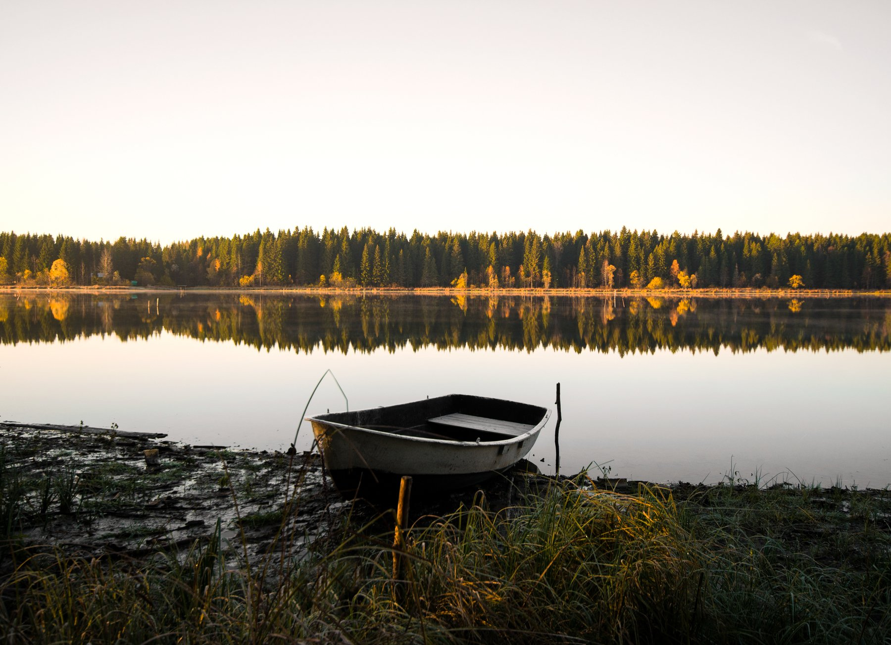 осень,утро,природа, Карепанов Евгений