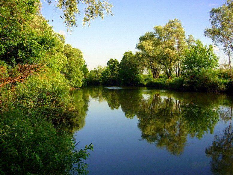 река сургут, Andi
