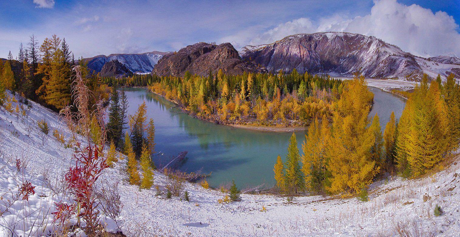 алтай, река, чуя, горы, вода, осень, снег, желтые, деревья, валерий_чичкин, Валерий Чичкин
