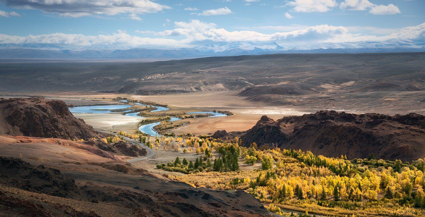 пейзаж, природа, панорама, горы, красная, желтая, золотая, осень, Алтай, Сибирь, холмы, Южно-Чуйский, хребет, река, Чуя, степь, долина, лес, широкий, большой, высокий, Дмитрий Антипов