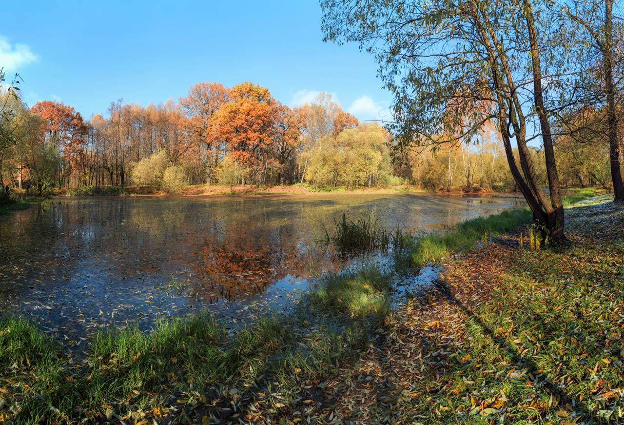 москва, парк, осень, солнце, Виктор Климкин