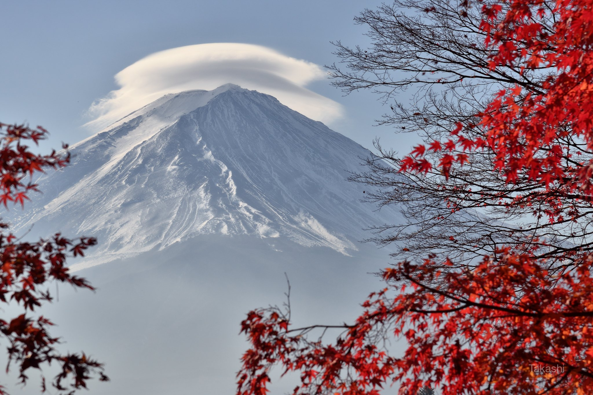 Fuji,Japan,mountain,clouds,lenticular clouds,maple,red,, Takashi