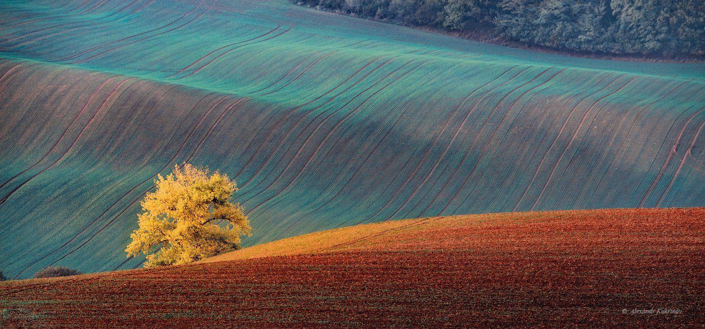 пейзаж, осень, моравия, Александр Кукринов