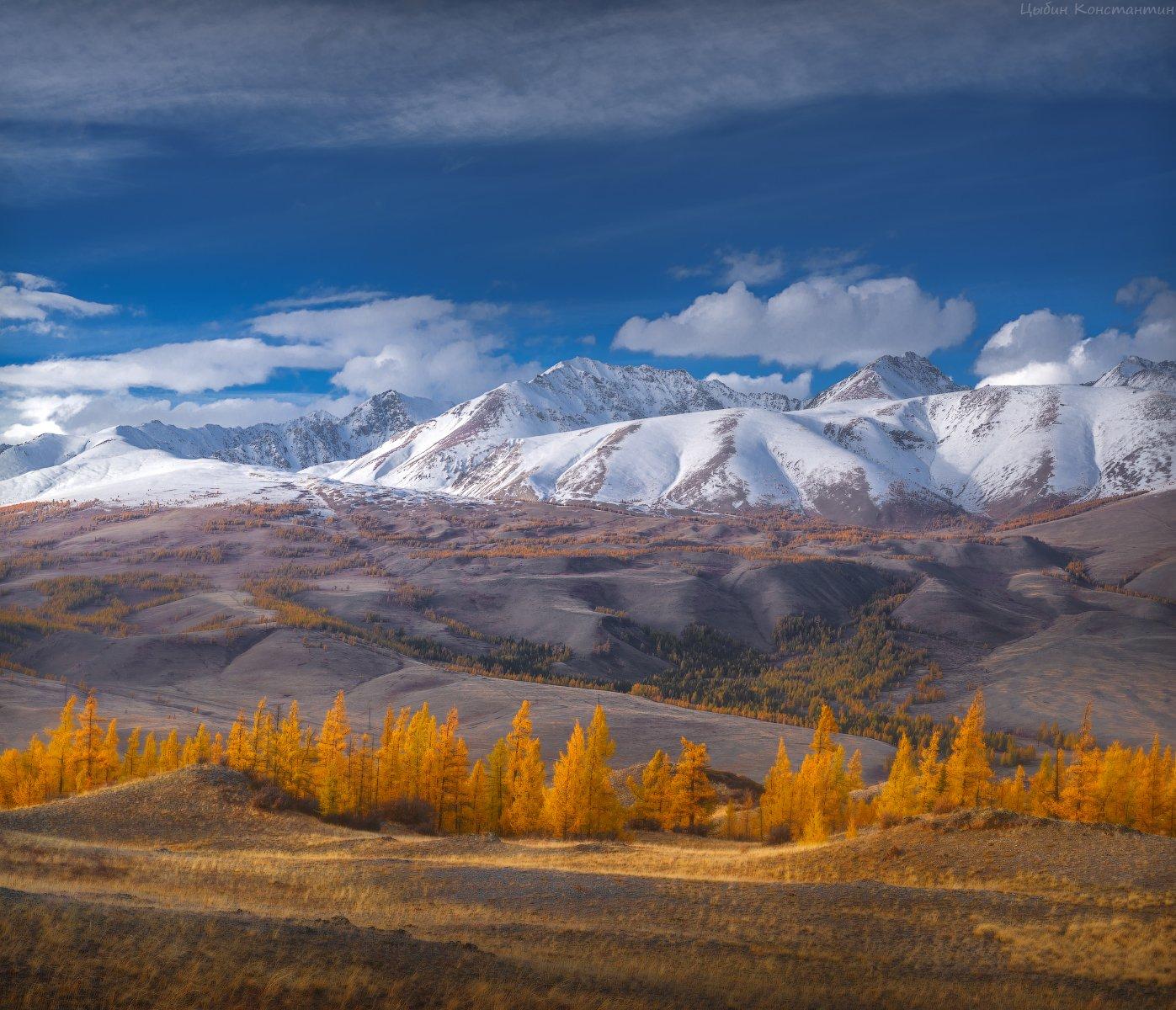 алтай, курай, курайский хребет, чуя, чуйский тракт, горы, осень, Цыбин Константин