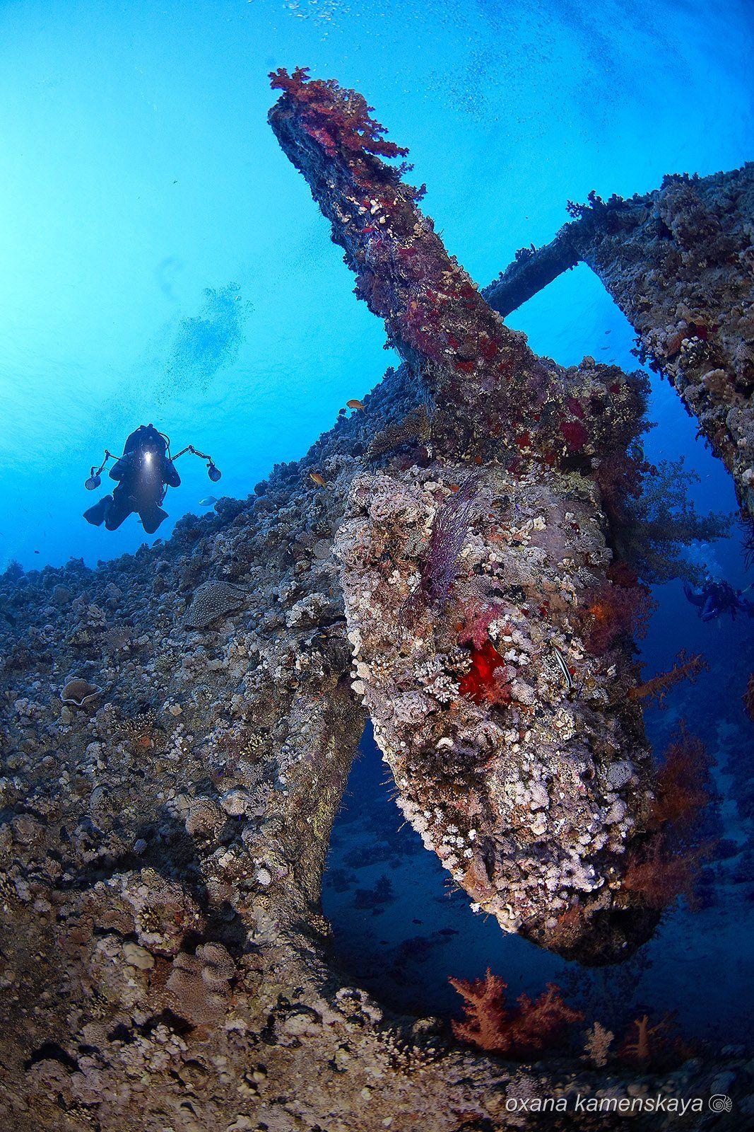 wreck SS Dunraven, Оксана Каменская
