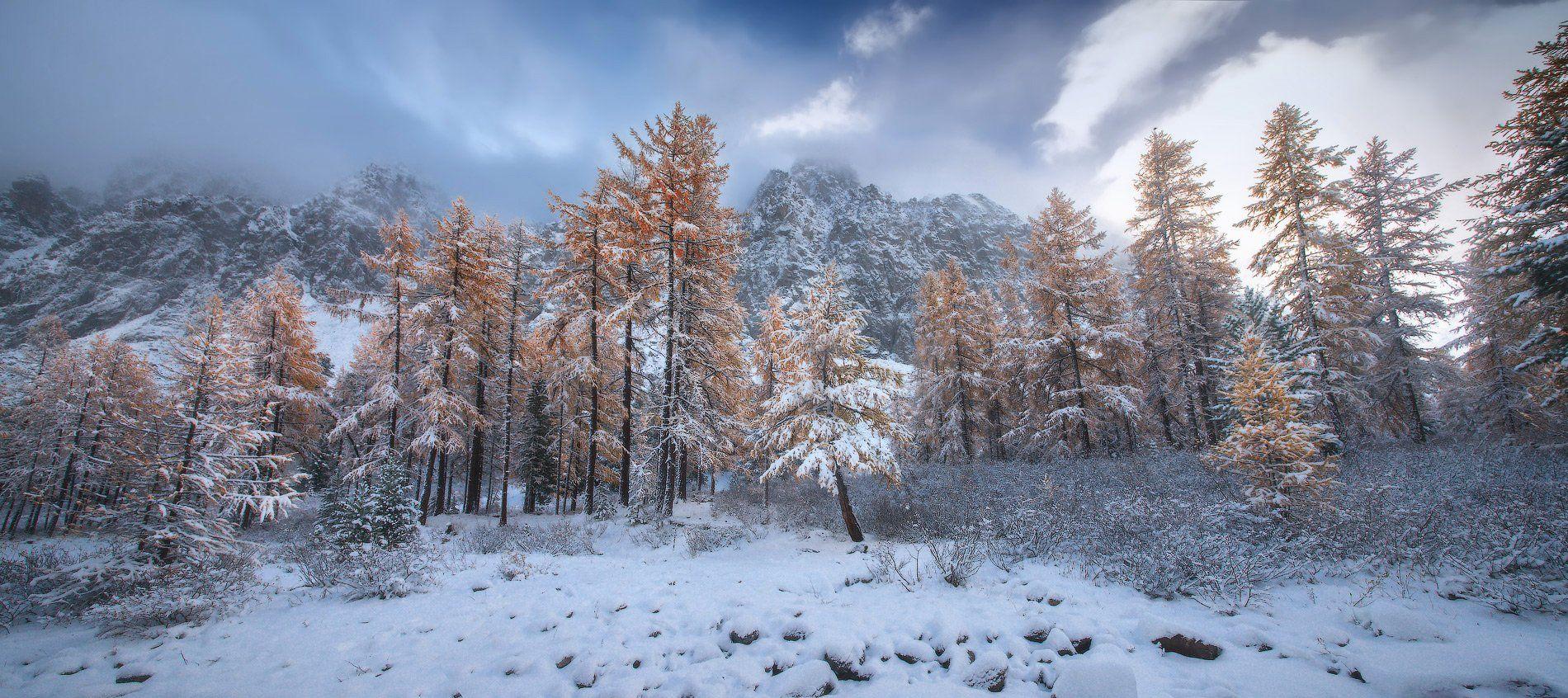 алтай, горы, осень, актру, зима, Владимир Ляпин