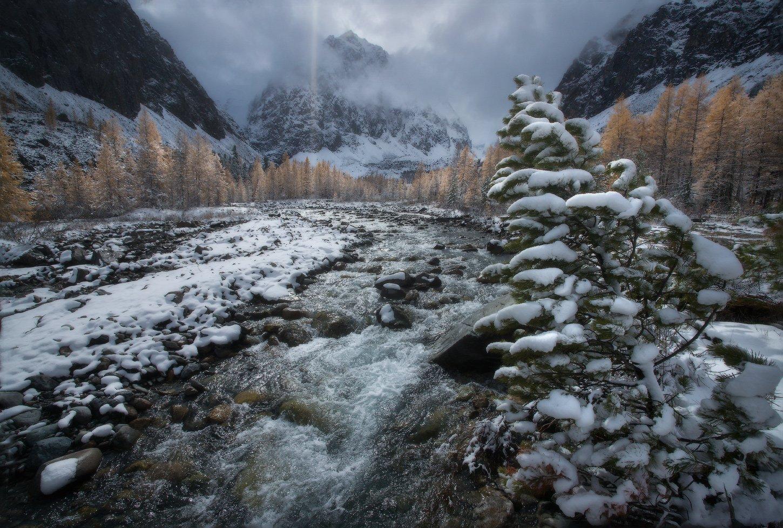 алтай, горы, осень, актру, Владимир Ляпин