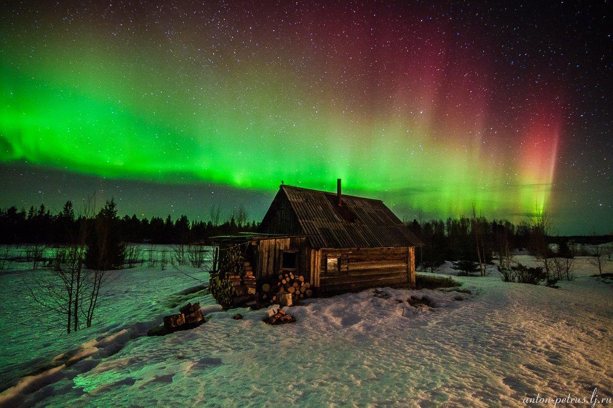 северное сияние, ночь, звезды, карелия, Антон Петрусь