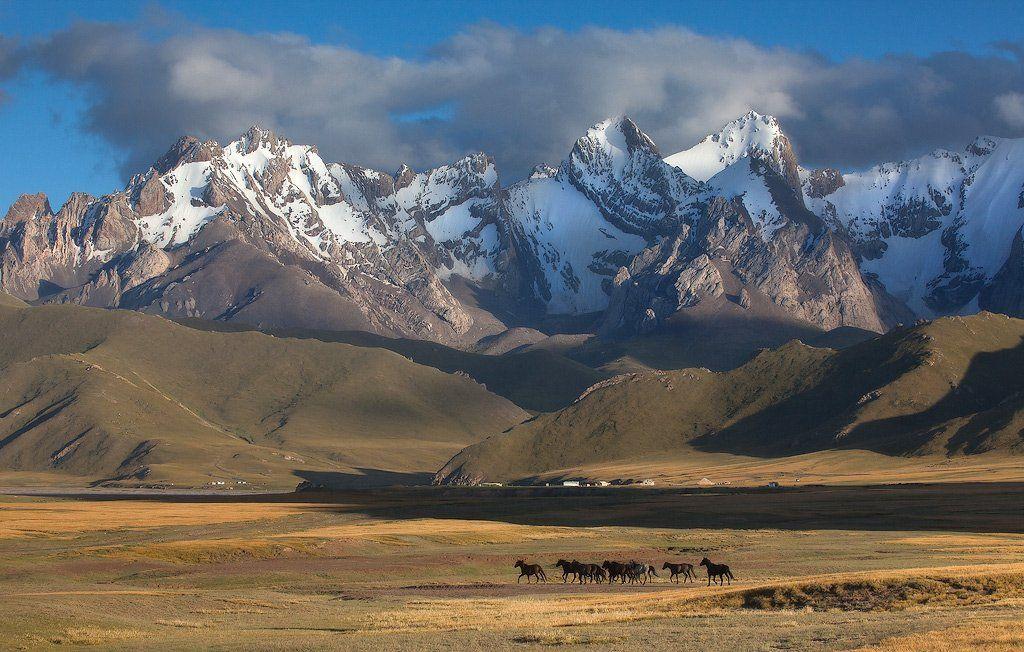 фотосафари, центральная азия, Constantine Kikvidze