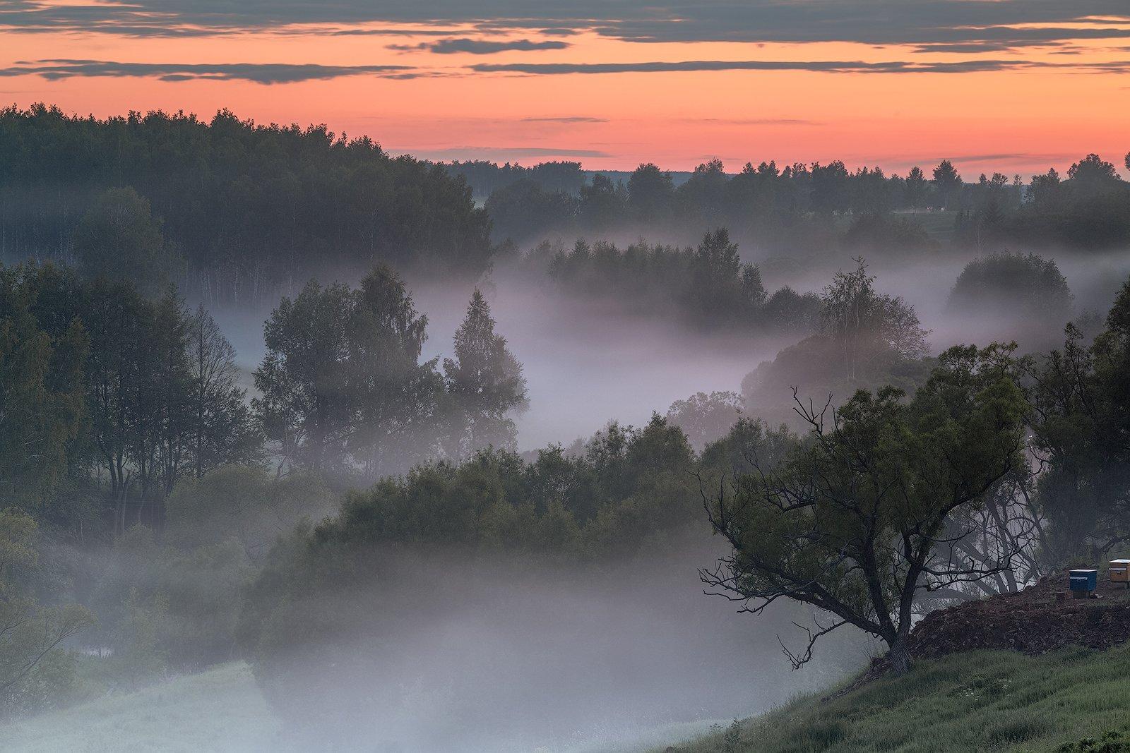 landscape, пейзаж, sunset, туман,, Алексей Самойленко