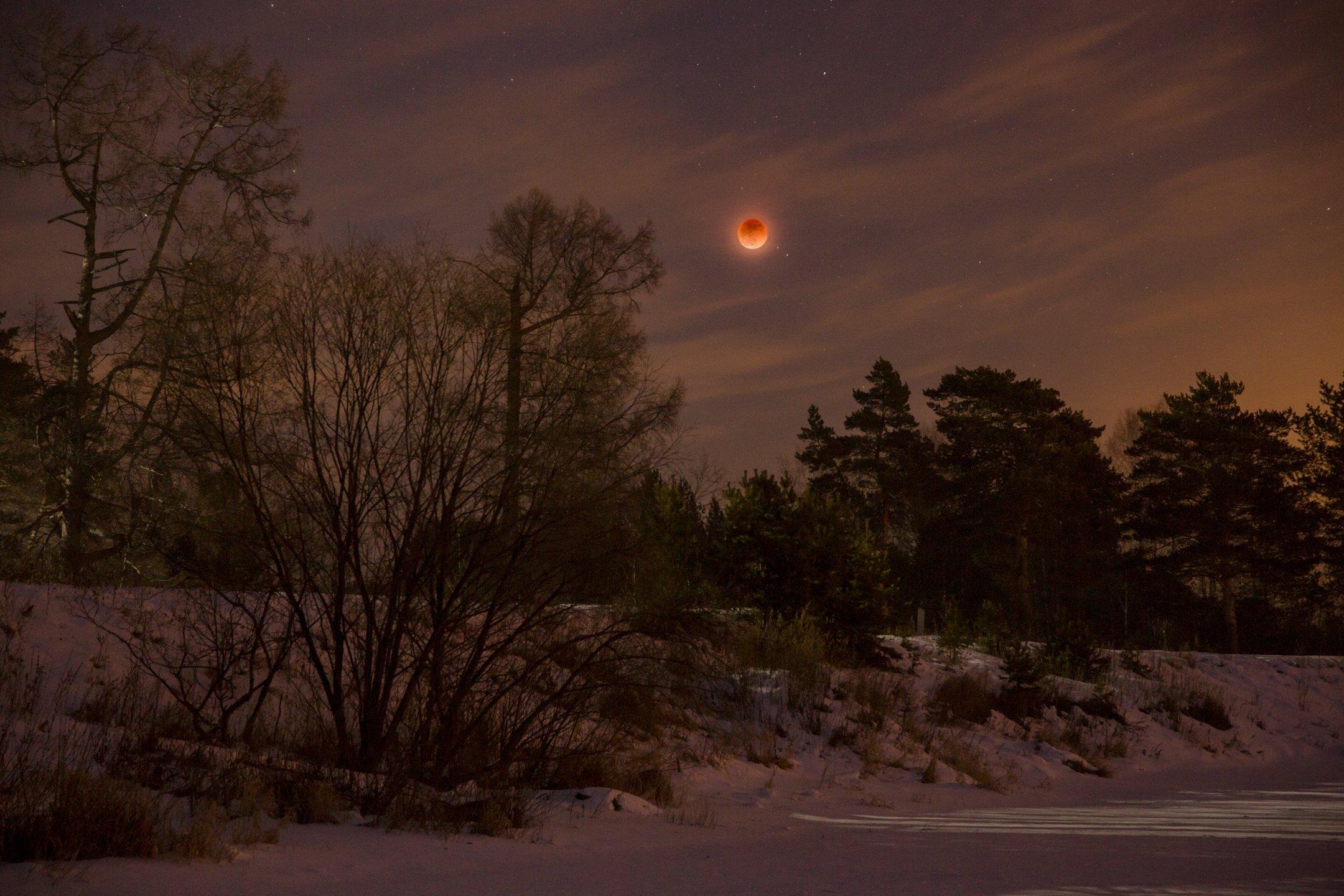 ночь, луна, затмение, звезды, облака, деревья, река, зима, снег, река, антон селезнев, Антон Селезнев