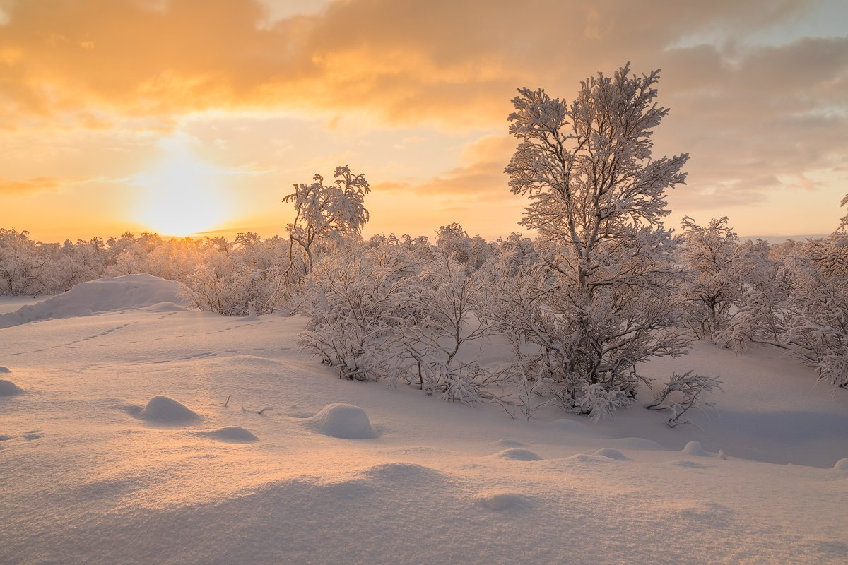 териберка, зима, море ,снег, зима, закат, Антон Петрусь