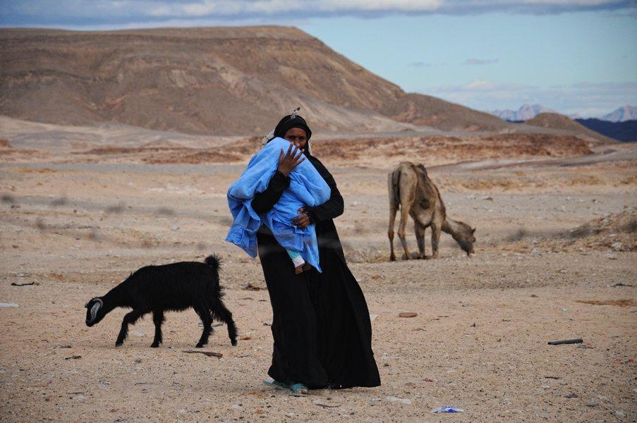 бедуины, кочевники, Slowhill