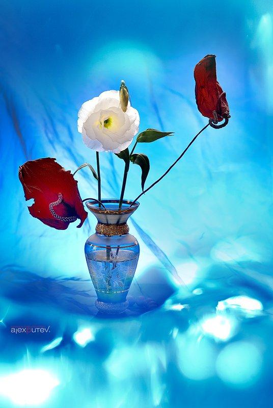 предметка, натюрморт, стекло,цветы, Александр Путев