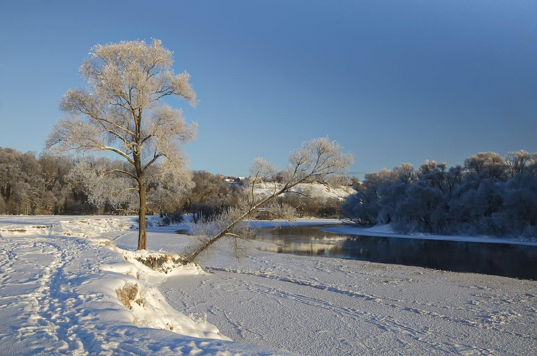 природа., зима., утро, Александр Березуцкий